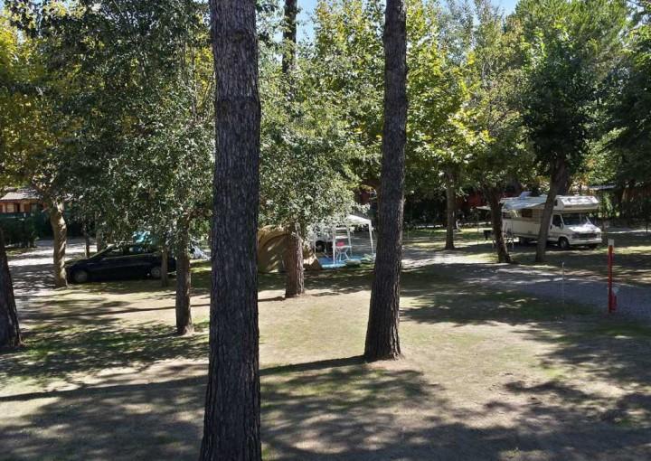 camping toscana che accettano cani