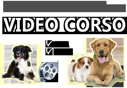 Addestra il tuo cane [videocorso]